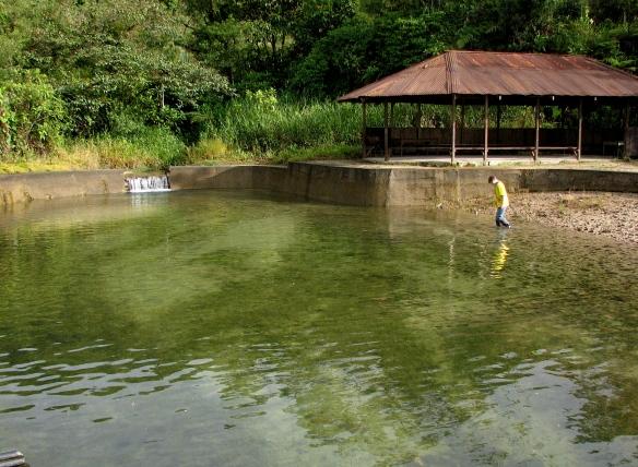 Mangayacu pool