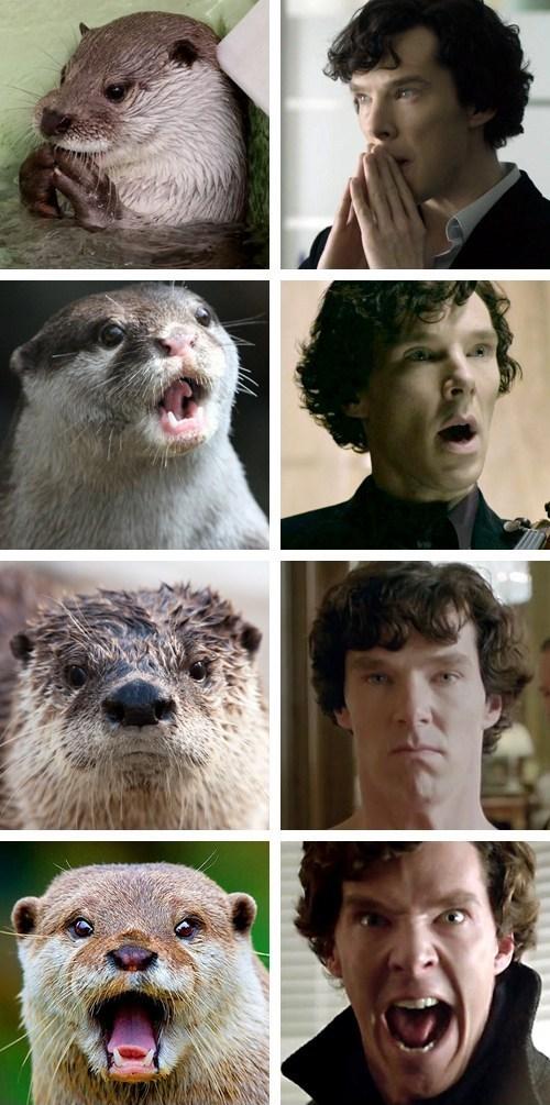 Benedict Otterbatch