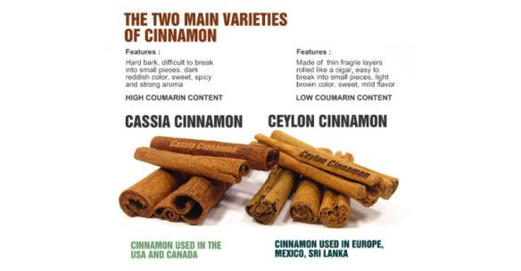 Cassia vs. Ceylon cinnamon sticks