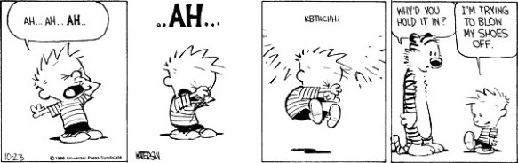 Calvin sneezing again